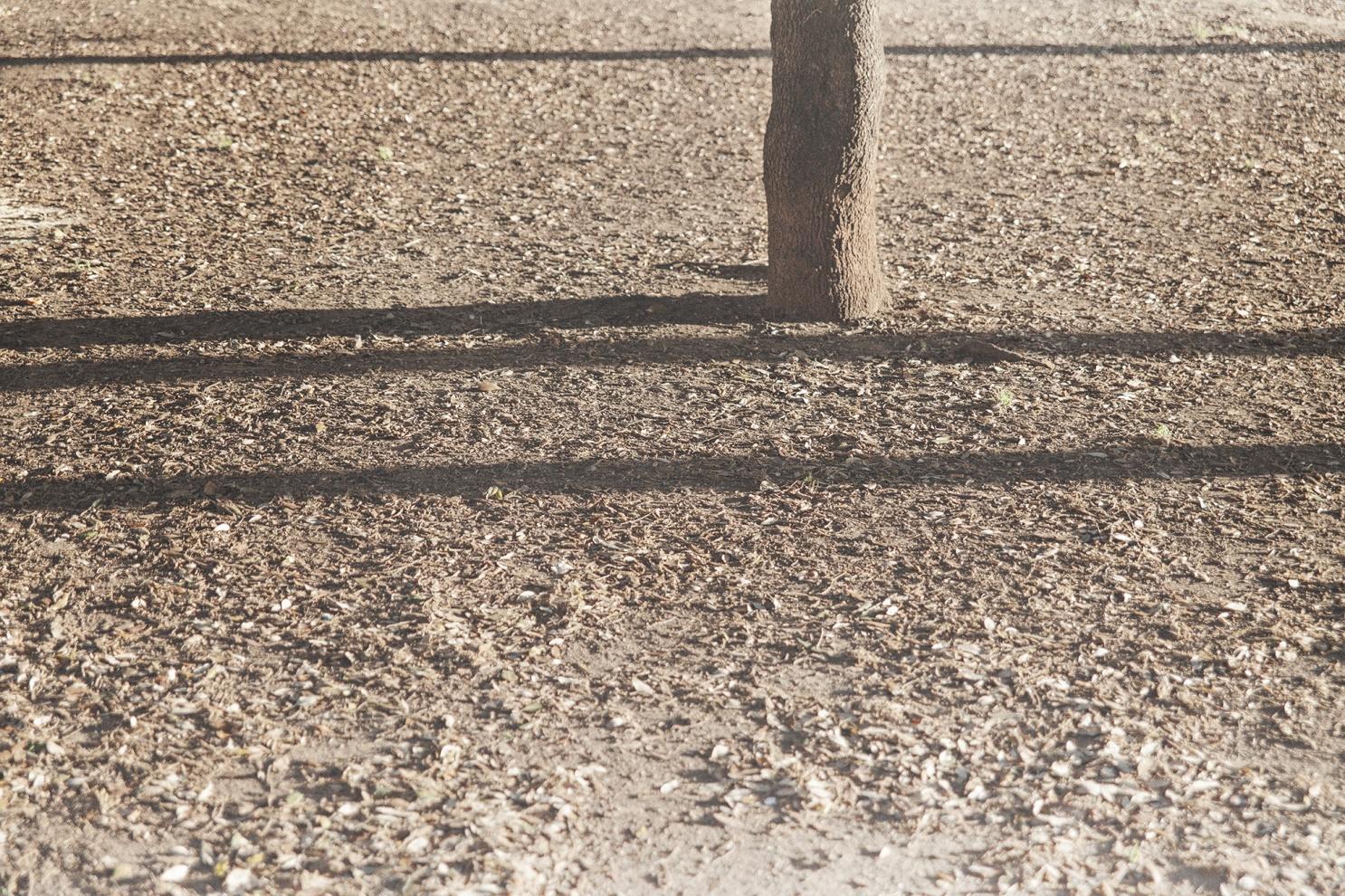 """Roberto Scialabba (24), piazza San Giovnni Bosco, Roma (28 febbraio 1978) militante di Lotta Continua, ucciso da alcuni appartenenti al gruppo terroristico d'ispirazione neofascista Nuclei Armati Rivoluzionari nel terzo anniversario della morte di Mikis Mantakas (23) e nella convinzione che a commettere la strage di Acca Larentia, un mese prima, sareb- bero stati i comunisti romani della vicina casa occupata di Via Calpurnio Fiamma. Ma tale posto era stato sgomberato dalla polizia il giorno precedente e, avendolo trovato chiuso, i neofascisti si recano nella vicina Piazza Don Bosco, ritrovo per molti militanti di sinistra della zona. Arrivati nei pressi dei giardinetti, posti al centro della piazza, il gruppo a volto scoperto inizia a sparare su un capannello di ra- gazzi radunato attorno ad una panchina, identificati come """"rossi"""" dall'abbigliamento. Cristiano Fioravanti va a segno colpendo al torace Roberto Scialabba ma, subito dopo, gli si inceppa l'arma. Il ragazzo non e' tuttavia ancora morto quando viene raggiunto da Valerio Fiora- vanti che lo fredda da distanza ravvicinata con due colpi alla nuca."""