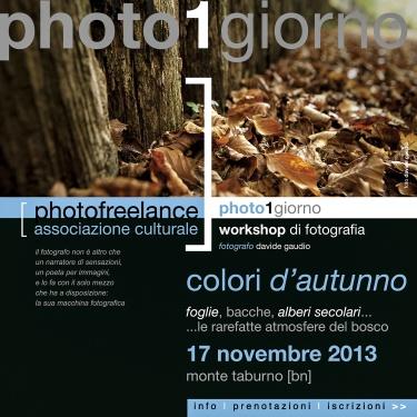 colori d'autunno   2013